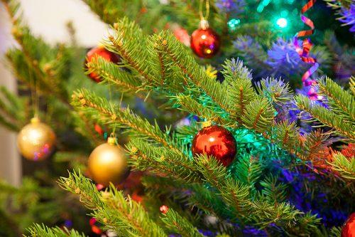 Рождественская, новогодняя ёлка