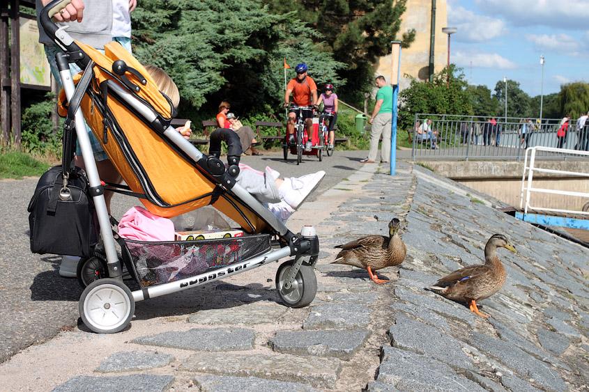 Чешское за деньги на улице 5 фотография