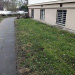Весна обнажила горы окурков вокруг общежития