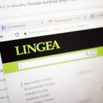 Онлайн-словари Lingea с платной подпиской